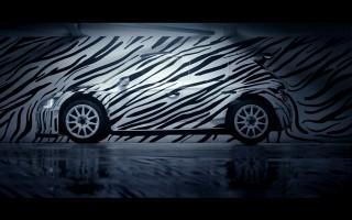 【動画】シュコダ、ファビアR5のゼブラ車両をSNSで披露