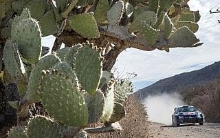 WRCメキシコ:事前情報 今季最初のグラベル戦に80kmの超ロングステージ登場