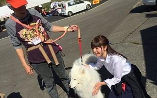 イヌスケのホゲホゲ日記アーカイブス、久万高原編!