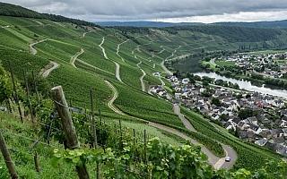 WRCドイツ事前情報:毎日路面が変化する多彩なターマック戦