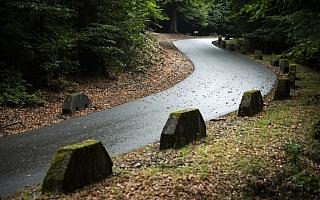 WRCドイツ:WRC2陣のプレテストでアクシデント続出