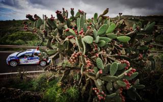 ERCがカレンダーを再編成、5月にアゾレスで開幕